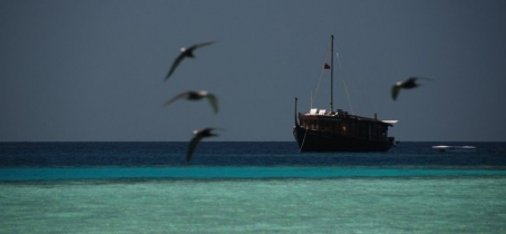 Traditional boat charter in the Maldives islands